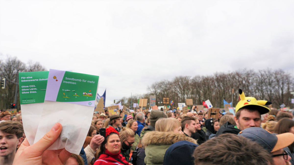 Fridays for Future 8
